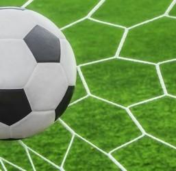 UNICORNO STYLE: 13th Intercultural Football Tournament at 8 (statement #14)