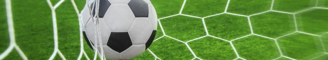 UNICORNO STYLE: 13°Torneo Interculturale di Calcio a 8 (comunicato ufficiale #14)