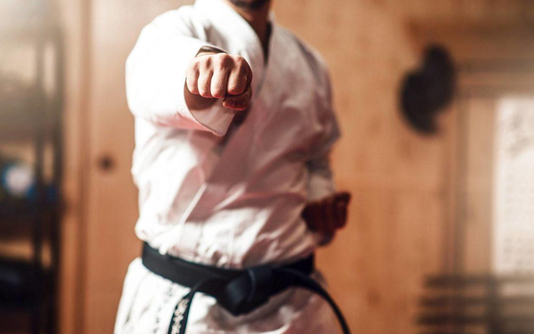 UNICORNO STYLE: Videolezioni di karate durante la pandemia